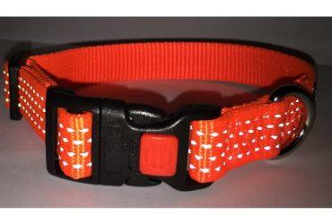 Nylon Reflective Safety Dog Collar – Orange