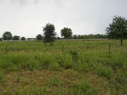 I acre( 6 plots)@ The Ark Estate behind Pan Atlantic University. Lekki