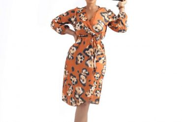 Animal Skin V Neck Wrap Dress